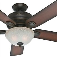 "52"" Hunter Outdoor Ceiling Fan, Onyx Bengal - Florence Glass CFL Light Kit"