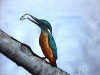 ART PRINT POSTER PAINTING ANIMAL NATURE KINGFISHER FISH BIRD ROLAND LFMP0377