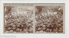 █ Vue Stéréoscopique / Stéréo : 67 MARIENTHAL 1910 Pelerinage Fontaine St-Michel