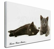 More details for kittens 'love you mum' x-large 30