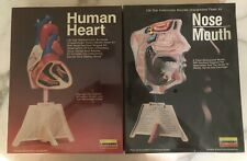 Lot New Lindberg 1987 1339 Nose Mouth 1338 Human Heart 1:1 Scale Life Size Model