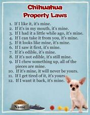 CHIHUAHUA Dog Magnet Property Laws PERSONALIZED With YOUR Dog's Name