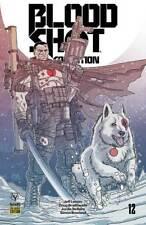 BLOODSHOT SALVATION #12 Pre-Order Variant Valiant Comics