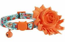 Girl Cat Collar with Removable Flower and Bell, Breakaway Floral Kitten Collar