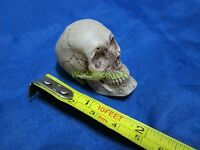 """1/6 Scale Hot Head Bones For 12"""" Action Figure Toys"""