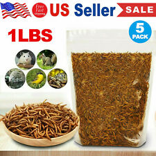 New listing 5x 1Lb Mealworms-Organic Meal Worms for Reptiles Birds / High Quality Guarantee