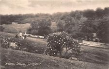 POSTCARD    SURREY    FAIRYLAND  Merrow  Downs