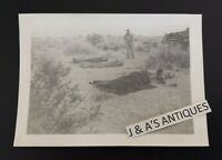 WWII U.S. Army Photo of Soldiers Sleeping In Desert ~ Military