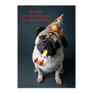 PAPYRUS Happy Birthday - brother birthday