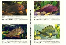 Supplements (Stickers) for AQUALOG African Cichlids II, Tanganyika I  TROPHEUS