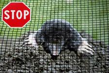 Maulwurfnetz Maulwurfbekämpfung Maulwurfgitter Maulwurfsperre Rasenschutz 3mx5m