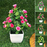 Artificial Flowers Plants in Pot Fake Floral Home Garden Wedding Party Decors