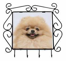 Cream Pomeranian Dog Wrought Iron Key Holder Hooks Christmas Gift, AD-PO94KH