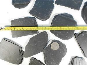 12x New NATURAL Flat SLATE Rock Gravel Pieces AQUARIUM or VIVARIUM Decoration