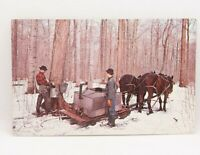 Maple Syrup Tree Tapping Gathering Horse & Cart Postcard Vintage Real Photo