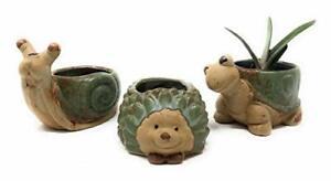 Cute Animal Succulent Planter Pots 3 Pack Turtle Snail Hedgehog Pot