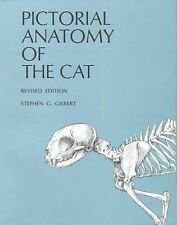 Pictorial Anatomy of the Cat by Stephen G. Gilbert (1975, Paperback, Revised)