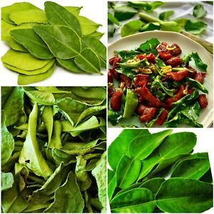 Dried Lime Leaves Organic Natural Food Soup,Cooking Recipe And Steam kaffir 25g
