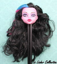 MONSTER HIGH ~ Dracubecca Freaky Fusion DOLL HEAD ONLY Replacement