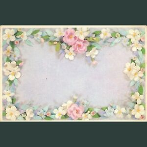 VTG Posted 1966 Greeting Postcard White Pink Flowers Lining