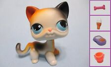 Littlest Pet Shop CALICO Kitty Cat Kitten 106 + 1 FREE Accessory 100% Authentic