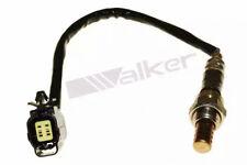 Lambdasonde Walker Products 250-24629