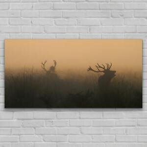 Print on Glass Modern Picture Photo Image 140x70 Animals Deers Antlers Wild