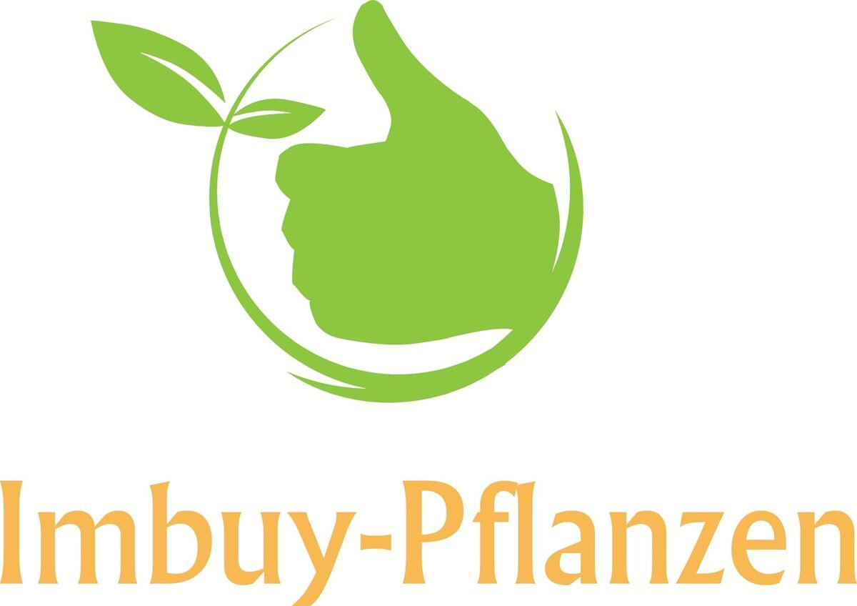 Imbuy-Pflanzen