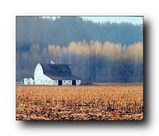 Old Barn Field and Trees Landscape Scenery Wall Decor Art Print Poster (16x20)