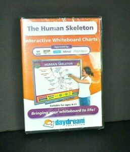 THE HUMAN SKELETON DAYDREAM EDUCATION DVD INTERACTIVE WHITEBOARD CHARTS NEW