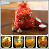 10 X Blooming Tea BlumenTee Teeblume Fortune Ball Flowering Dekor