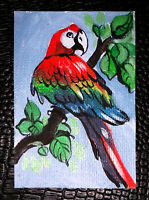 "Original art by Bastet ""Macaw Parrot"" OOAK hand painted ACEO"