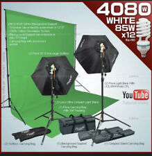 4080w Studio Lighting Softbox Backdrop Stand Muslin Kit Linco Flora Green Screen