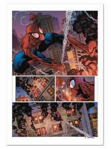 The Amazing Spider-Man #596 Canvas Giclee Art Paolo Siqueira Marvel Artworks