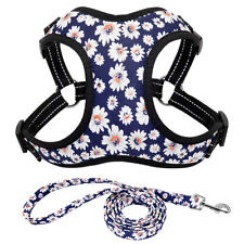 Reflective Dog Harness and Lead Set Mesh Vest for Jack Russell Beagle Pitbull