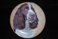 Danbury Mint Quote Springer Spaniels Decorative Plate Faitful Friend