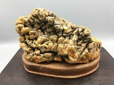 Natural polished Viewing stone suiseki-Gobi desert agate amazing color pattern