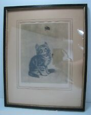 Old Artwork 'Bumble Bee' Kitten watching Bee Meta Pluckebaum ? print etch framed