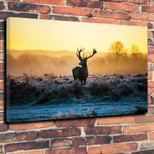"Majestic Highland Stag Printed Canvas Picture A1.30""x20""30mm Deep Winter Snow"