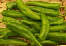 Chilli Pimienta-Anaheim - 15 Semillas Crecer Su Propio Chillies