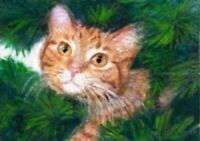 BCB Orange Tabby Cat Climbing Pine Tree Print of Painting ACEO 2.5 x 3.5 Inches