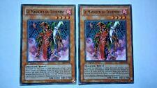 2 Cartes Yu Gi Oh Le Magicien Du Tourment SD6-FR014