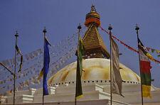 Tibetische GEBETSFAHNE - vertikal - für Fahnenmast - Größe L - Baumwolle - Nepal