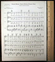 """Original COLLEGE OF THE HOLY CROSS Vintage Song Sheet c1929 /""""Chu-Chu-Rah-Rah/"""""""