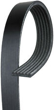 Serpentine Belt K061251 Gates