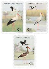 Turkey 2020, storks, birds, mnh