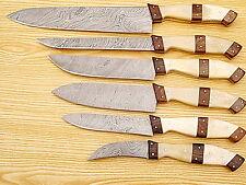 CUSTOM MADE DAMASCUS BLADE 6 Pc's. KITCHEN KNIVES SET. (ZE-1007-6)