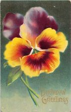 Huge Pretty Pansy on Old Birthday Postcard