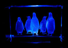 "3"" 3D LASER  CRYSTAL Penguin Five Penguins + Free Light  Base - Christmas Gift"