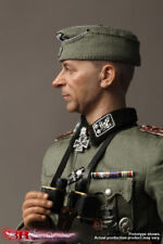 did action figure german paul hausser 1/6 12'' boxed hot toy ww11 dragon